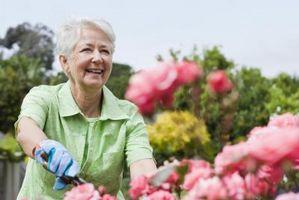 Er det farlig å lage en hage Bed Fra slagg blokker?
