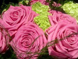 Tips om Making Roses vare lenger