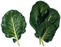Forskjeller mellom Collard Greens & Mustard Greens