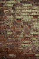 Hvordan Brighten en Brick Eksteriør
