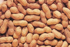 Forskjellen mellom Green & Raw Peanuts