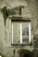 Hvordan Clean Moss Off Window Glass