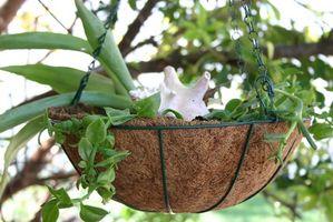 Hvordan legge ved en Planter til a Tree
