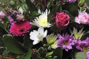 Hvordan lage en Round Flower Arrangement