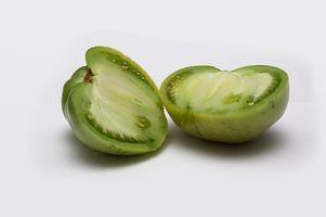 Hvordan Grow Green Tomatoes