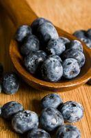 Hvordan søke gjødsel til en Blueberry Plant