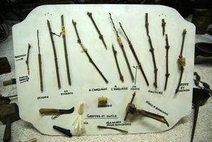 Hvordan gjør jeg Graft Wild Pecan Trees?