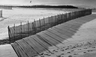 Slik installerer en Sand Fence