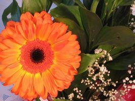 Hvordan lage en Floral Table Arrangement