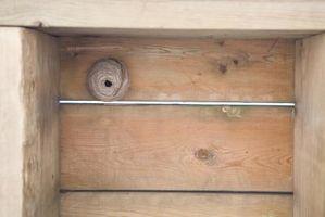 Hvordan Stopp Veps Fra Nesting