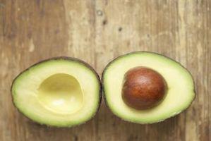 Hvordan Grow Avokado Fra Stones