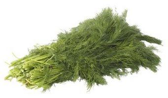 Hvordan Cut Dill Weed