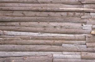 Slik Cure Cedar Trees