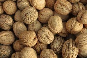 Hvorfor Walnut Trees ikke vil produsere