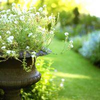 Hvordan lage en Floral Stand