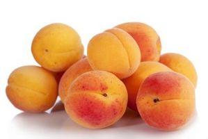 Aprikos Trees for hjem gartnere