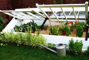 Hvordan bygge en kald ramme for Plant Starter