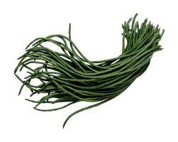 Hvordan Grow aspargesbønner