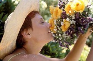 Blomster som lukter Nice