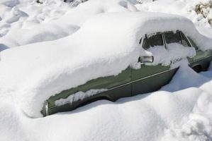 Hvordan Brace for en Blizzard