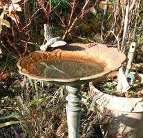 Hvordan bygge en foss Bird Bath