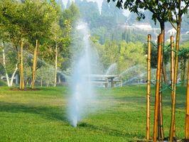 Hvordan fikse en sprinkleranlegg