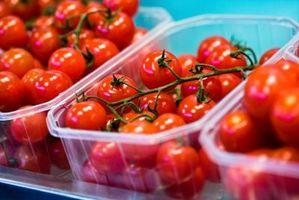 Hvordan Grow Organic Tomater Innendørs