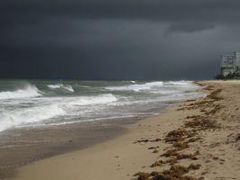 Hvordan takle Tyfoner