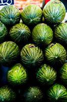 Hvordan Grow Vannmelon i en Pot
