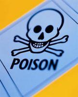 Slik unngår Child Poisoning hjemme