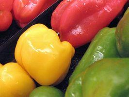 Hvordan Grow Pepper Planter i Texas