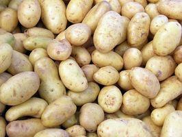 De Avlinger Ikke til anlegget etter en potet avling
