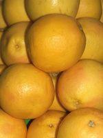 Citrus Tre Identification