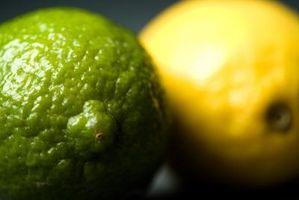 Hvordan kan du fortelle forskjellen mellom en sitron og en Lime Tree?