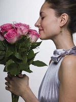 Hvorfor planter har blomster som er lyst Coloured?