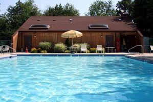 Grønn Alger i My Pool