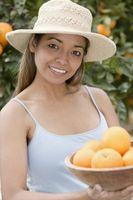 Hva slags Appelsintrær kan leve innendørs?