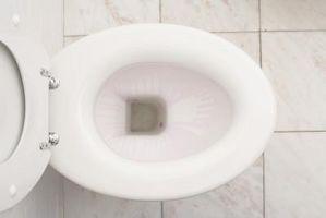 Hvordan bli kvitt vannet i en Toilet Bowl