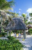 Hvordan Fest palmeblader til en Tiki Hut