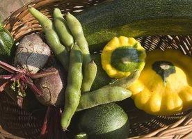 Kompatibilitet av vegetabilsk planter med hverandre