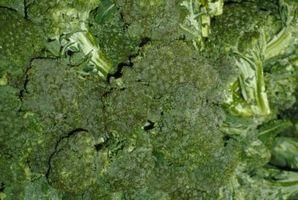 Hvordan Blanch og Freeze Brokkoli